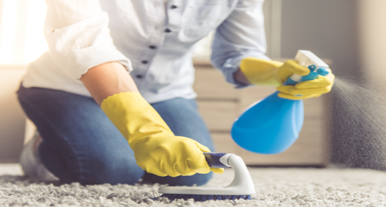 Refresh your living space with our best-selling cleaning supplies!
