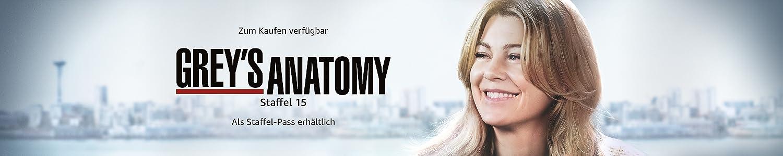 Grey's Anatomy - Staffel 15 [dt./OV]