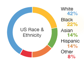 Chart: US Race and Ethnicity Overall | White 42%, Black 22%, Hispanic 14%, Asian 14%, Other 8%