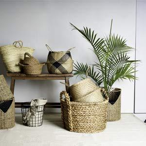 Baskets we Love