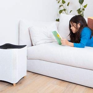 Newly Launched: Mila Air Purifiers