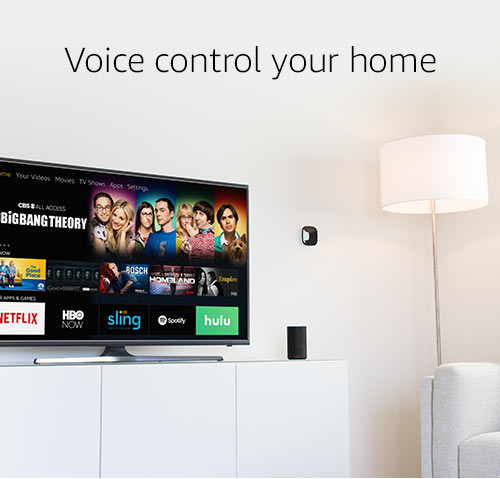 Voice with Your Home