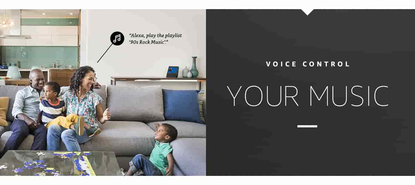 Voice Control Your Music