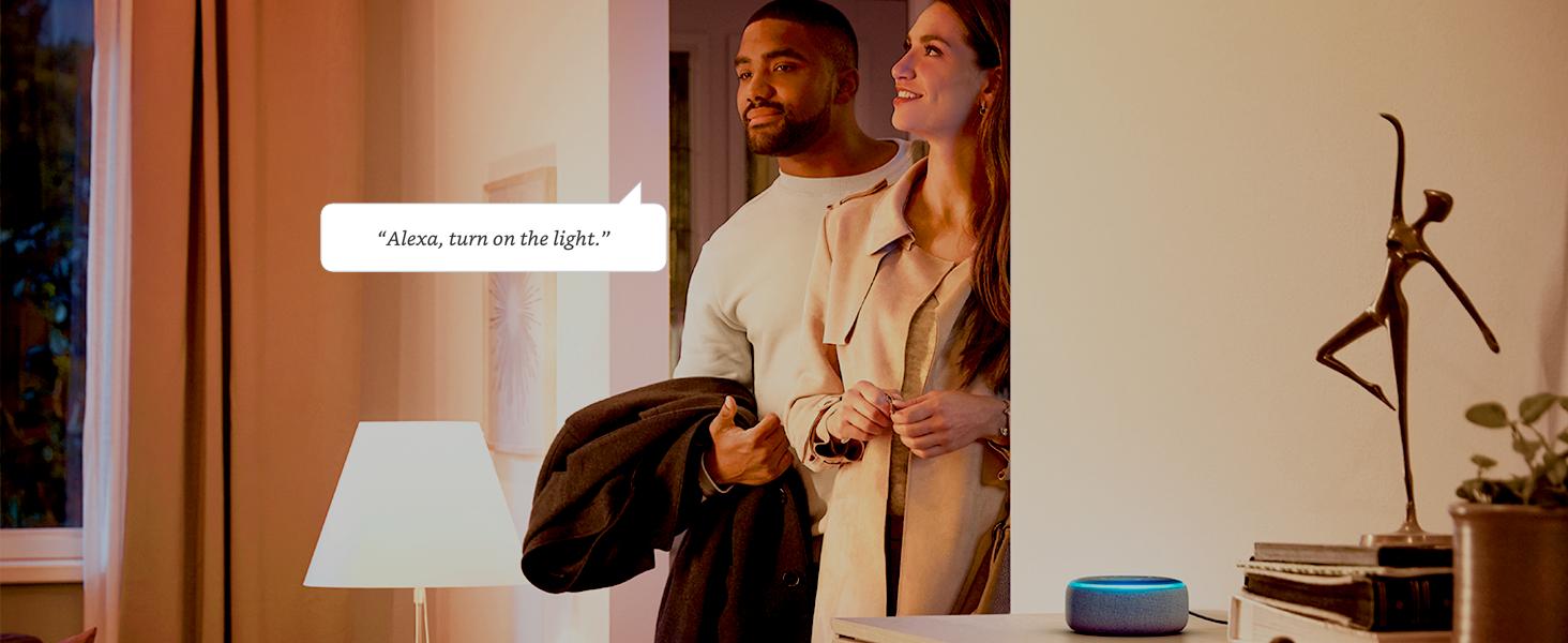 Alexa, turn on the lights.