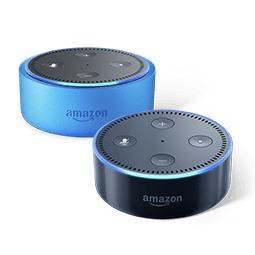 Compatible Echo Devices