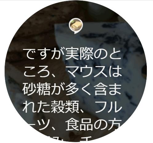 Echo ShowでのBodyTemplate1