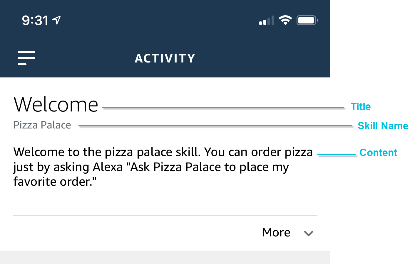 Simple card on the Alexa app displaying plain text