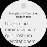 Echo Show Header Text