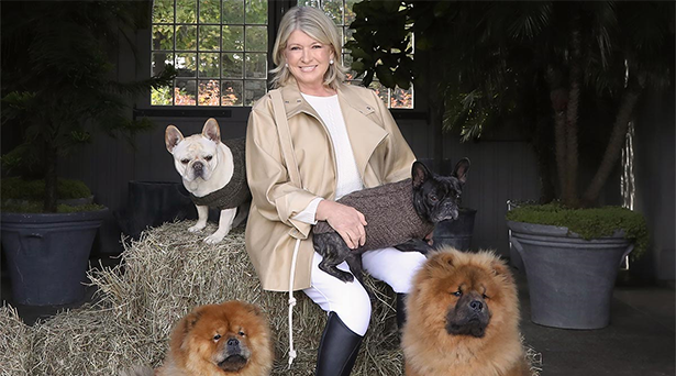 Martha Stewart's top picks for the pet-mom