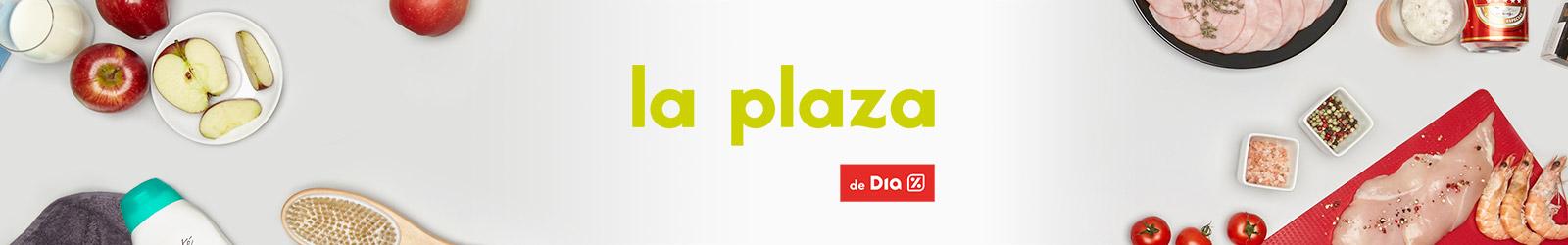 La Plaza de Dia