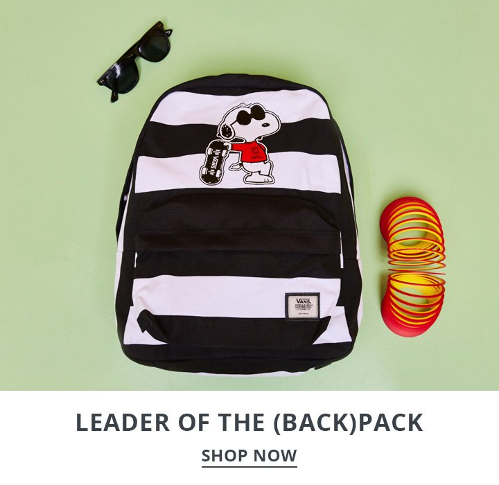 image of snoopy backpack on a green background