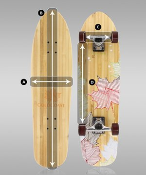 skateboard front and back