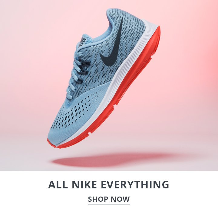 Image of a Men's Nike Running Shoe.