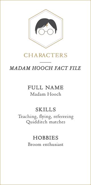 Madam Hooch Fact File