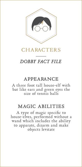 Dobby Fact File