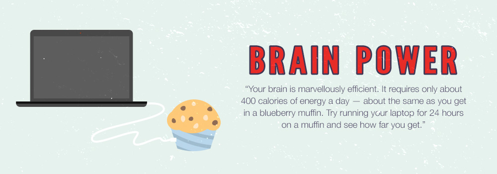 Brain Power | Your brain is marvellously efficient. It requires only about 400 calories of energy a day — about the same as you get in a blueberry muffin. Try running your laptop for 24 hours on a muffin and see how far you get.