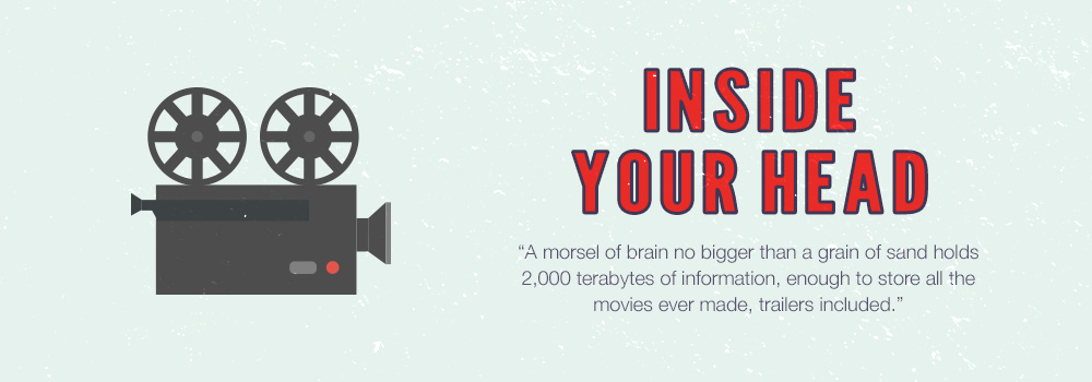 Inside Your Head | A morsel of brain no bigger than a grain of sand holds 2,000 terabytes of information, enough to store all the movies ever made, trailers included.
