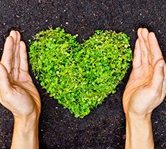 Bis zu 15% reduziert: Angebote zum Tag der Umwelt