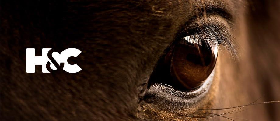 Die ganze Welt des Pferdesports mit allen News zum Pferde- und Country-Lifestyle