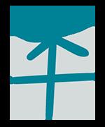 Startseite – Widget-Bild