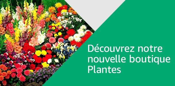 Découvrez notre nouvelle boutique Plantes