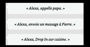 Alexa, appelle papa. | Alexa, envoie un message à Pierre. | Alexa, Drop In sur cuisine.