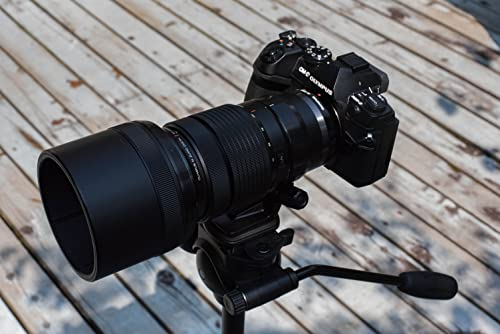 OLYMPUS OM-D E-M1 MarkⅡ + OLYMPUS 40-150&OLYMPUS 300mm