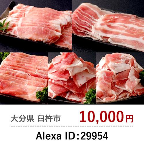 Alexa ID: 29954