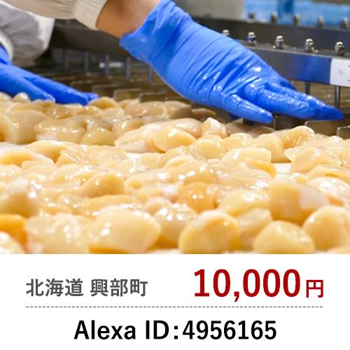 Alexa ID: 4956165
