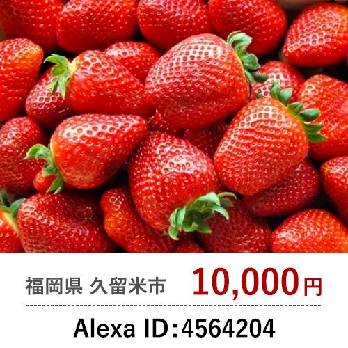 Alexa ID: 4564204