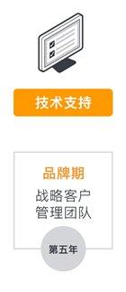 技术支持,第五年品牌期,战略客户管理团队-amazon business 中国企业定制化解决方案