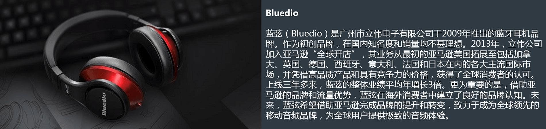 蓝弦(Bluedio)