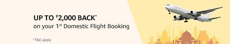 1st Domestic flight booking