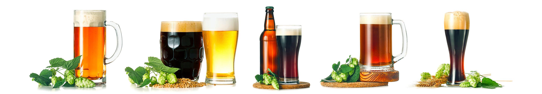 Como surgiu a cerveja