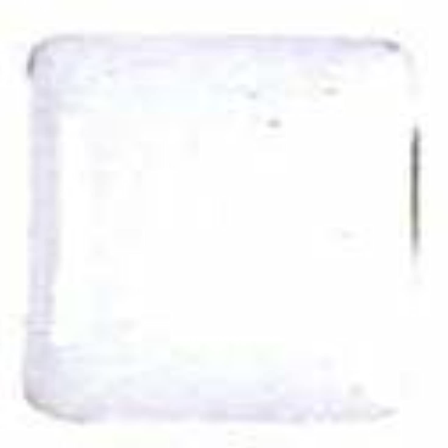 宣教師放送雨の七宝釉薬 50g B100 書割白 不透明