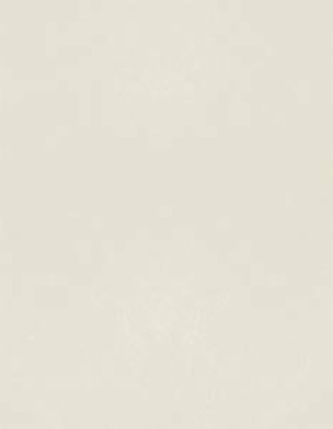 Crest Natural White 80 lb. Cardstock Paper - 8.5 x 11 inch Cover - 25 Sheets