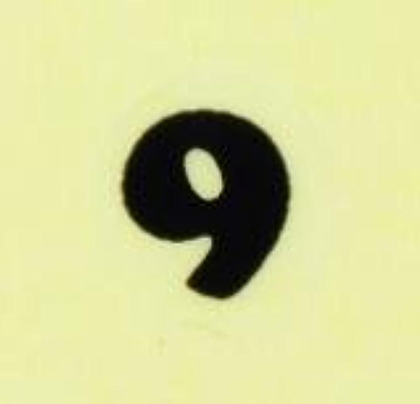 偏心評決ペルメル【数字ネイルシール】2明朝体9BK/各1シート9枚入
