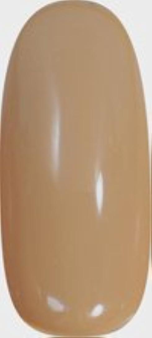 ポジティブゴミライフル★para gel(パラジェル) アートカラージェル 4g<BR>AP5 パールベージュ