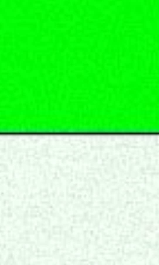 Glow Inc. Ultra Green V10 Glow Powder 1/4 Ounce
