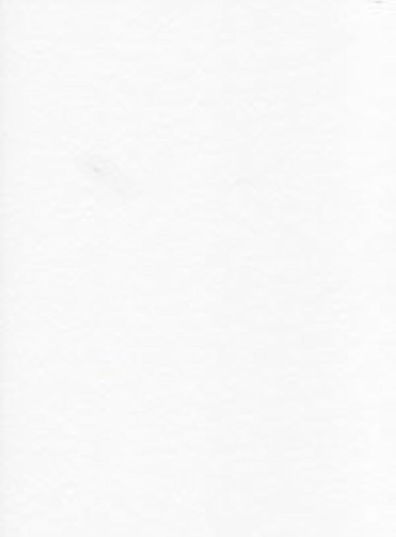 Lorenz Papier in Pergamentpapier-Optik, bedruckbar, 150 g, g, g, A4, Weiß, 100er-Pack B00AU0N2MI   Die erste Reihe von umfassenden Spezifikationen für Kunden  097e3a