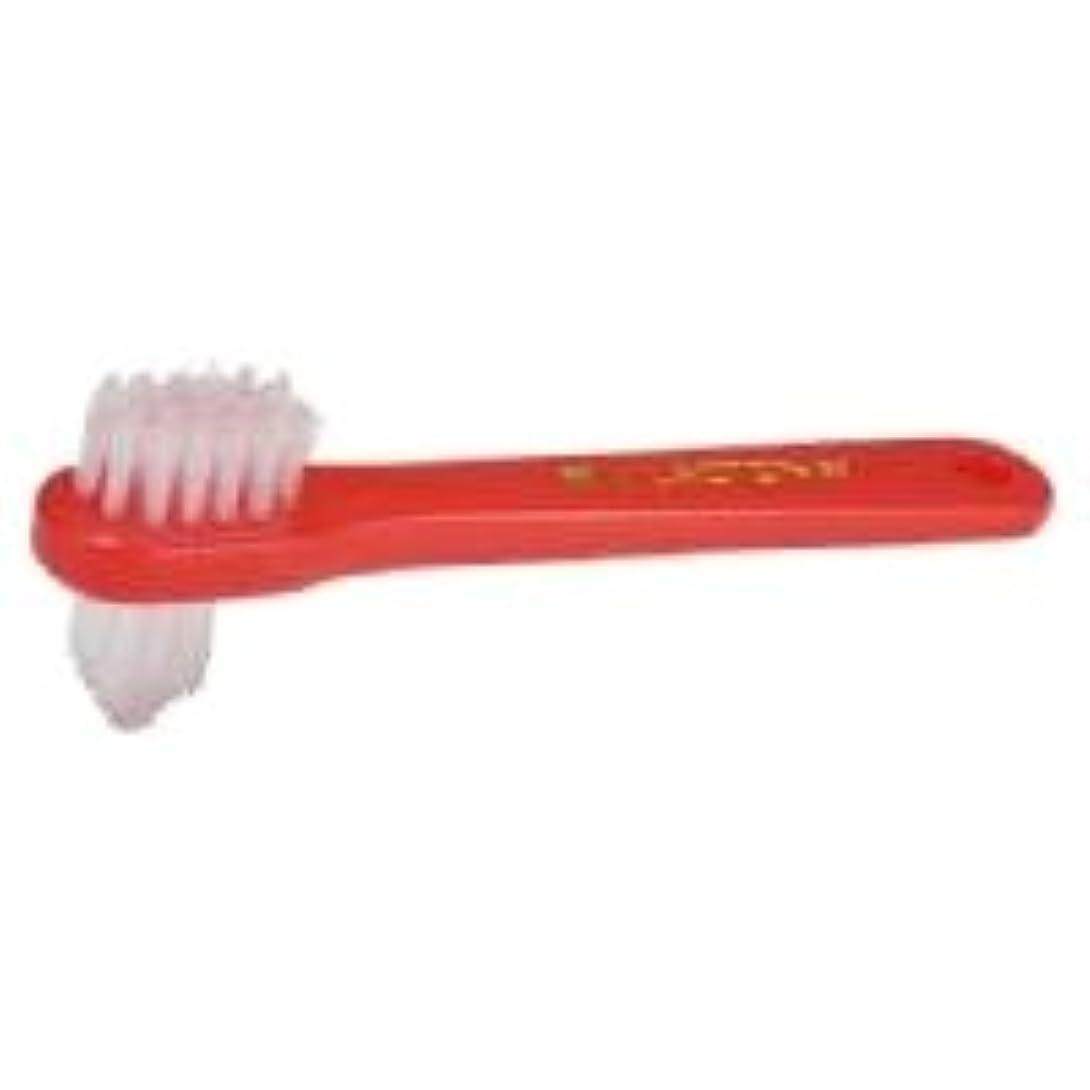 大騒ぎジョージバーナード計算【ラクトナ】【歯科用】ラクトナ歯ブラシ #500 M 1本【義歯用ブラシ】