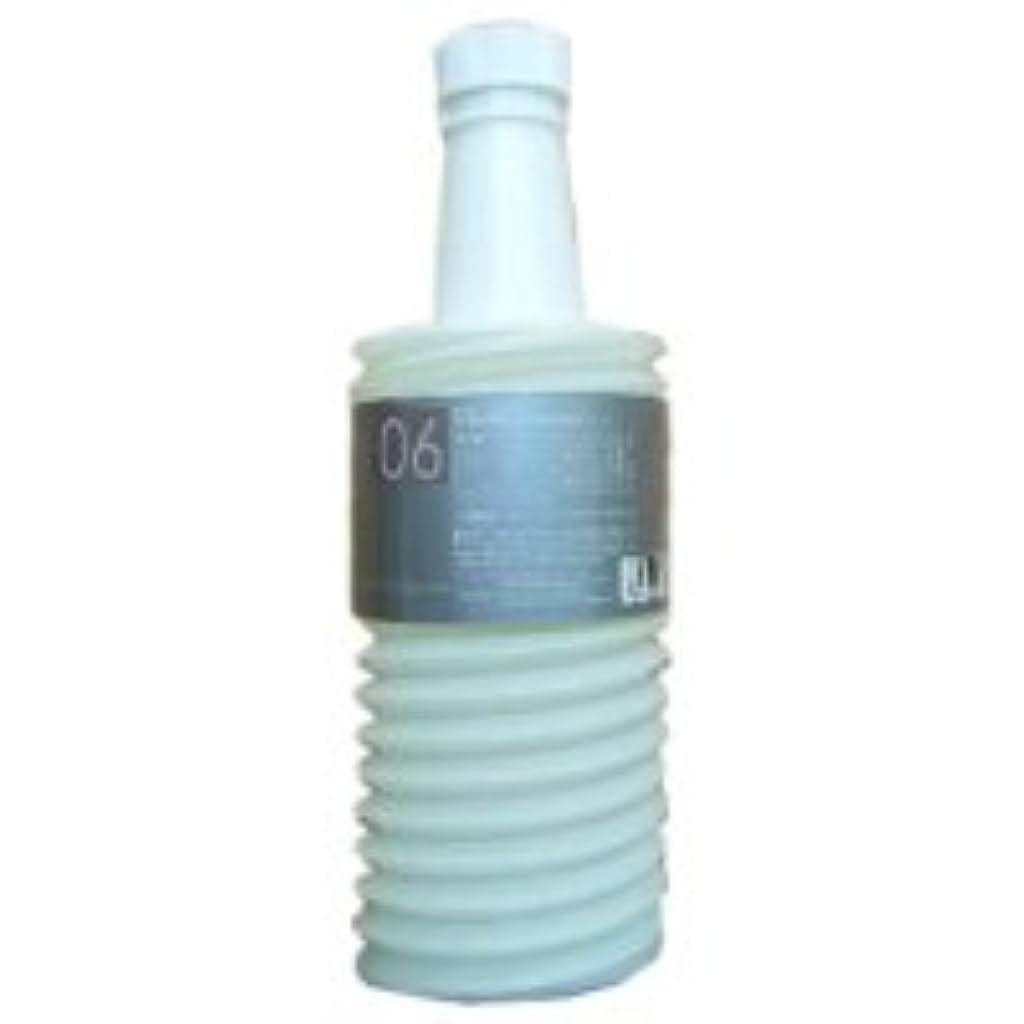 アコードインターネットドアミラームコタ アデューラ アイレ06 ヘアマスクトリートメントモイスチャー 700g(業務?詰替用)