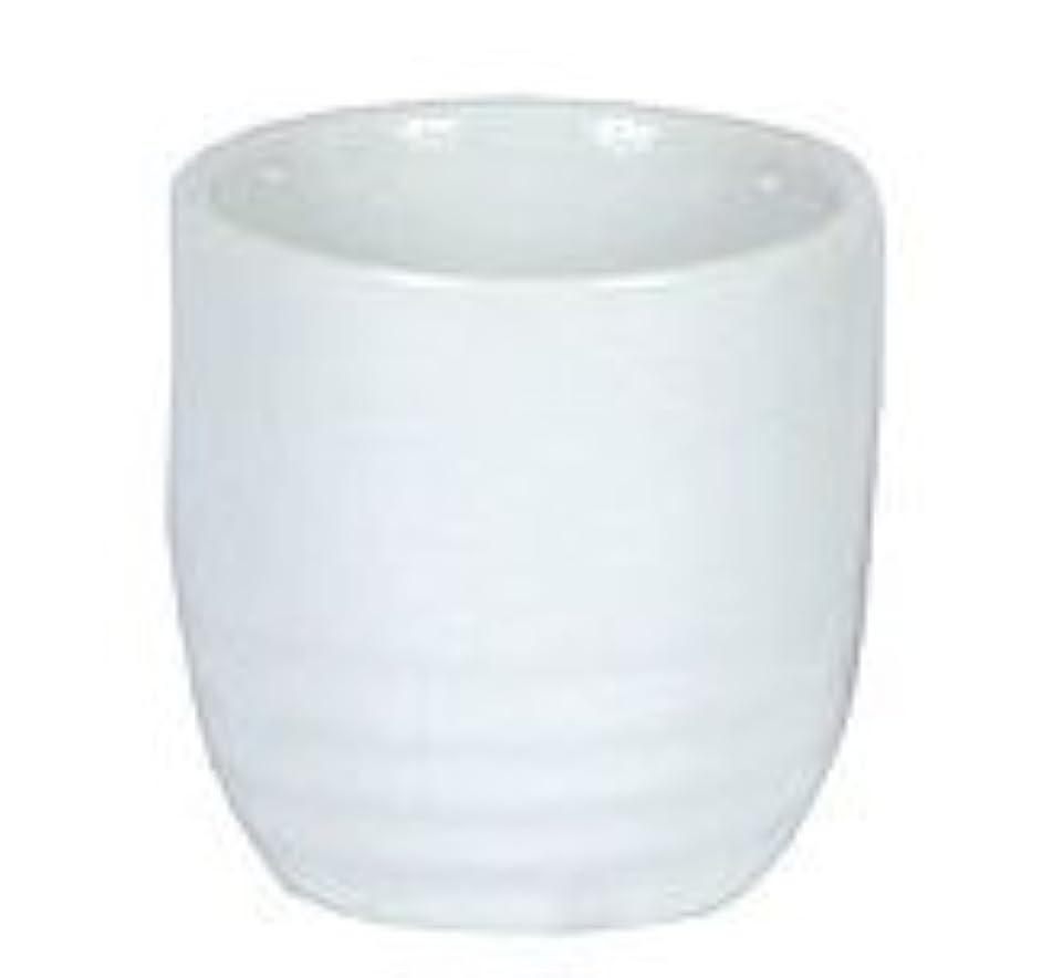 One Dozen White Sake Cups Made In China