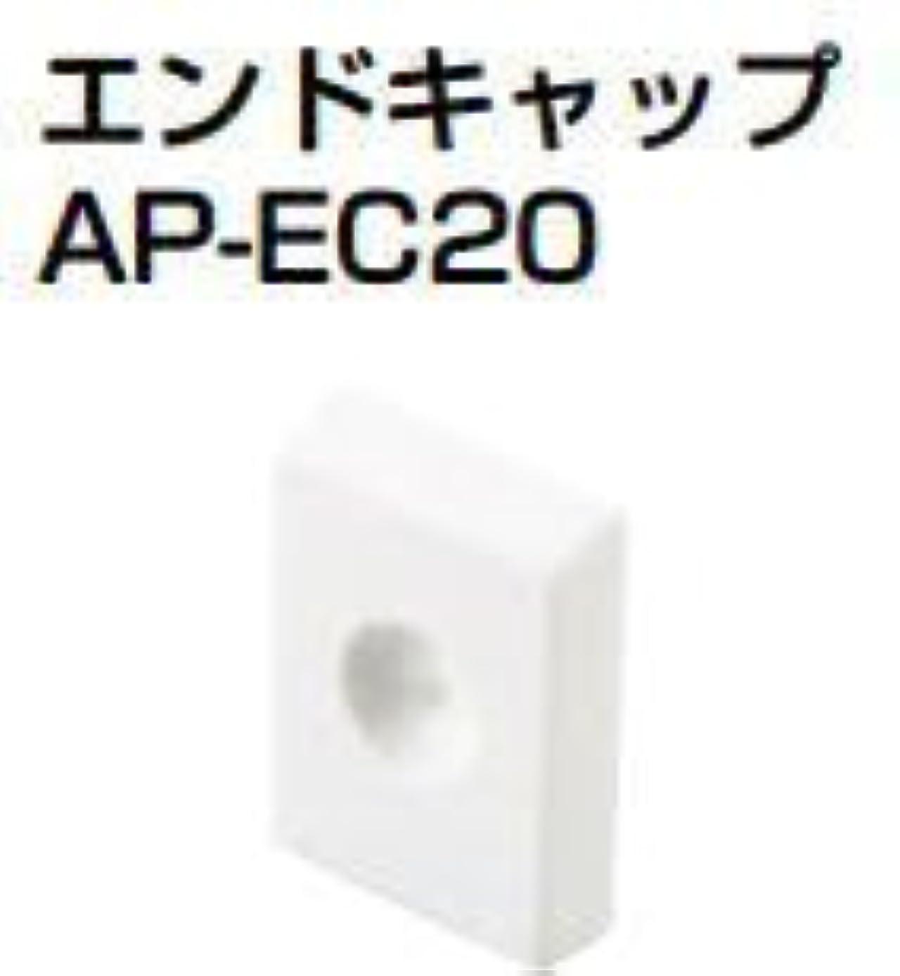 誰。寛解杉田エース ACE (163-525) エンドキャップ AP-EC20