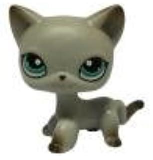 Cute Littlest Pet Brown Short Hair Cat Heart Face Cat