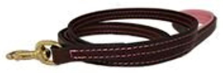 Auburn Leathercraft Padded Handle Leash 3 4  x 72  BGY PNK