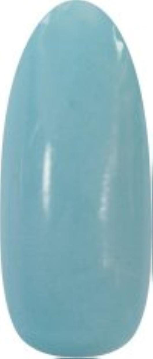 キルト検出器シャー★para gel(パラジェル) アートカラージェル 4g<BR>M015 アイスブルー