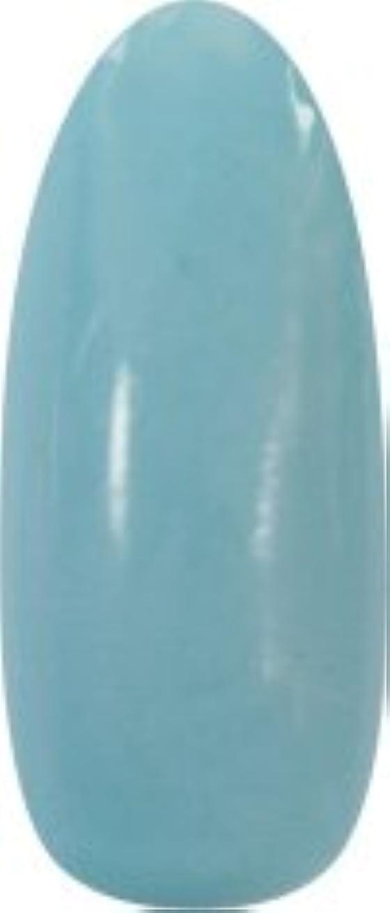 博物館フリースくつろぐ★para gel(パラジェル) アートカラージェル 4g<BR>M015 アイスブルー