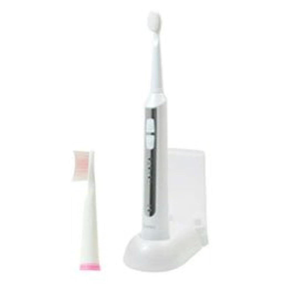 の配列クラック不快DRETEC 音波式電動歯ブラシ 高速振動と選べる振動モードでしっかり磨ける ホワイト TB-500