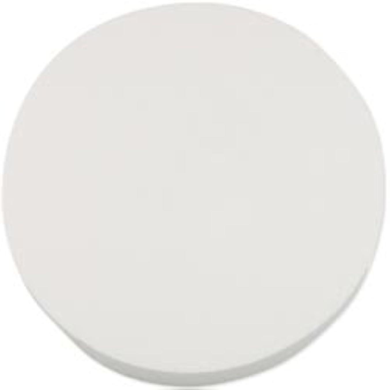 Bulk Buy: Smoothfoam Styrofoam Disc 8